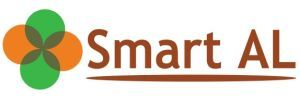 First Workshop of the SmartAl project