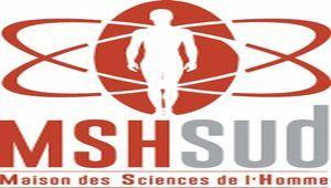 Thumb logo mshsud vecto1