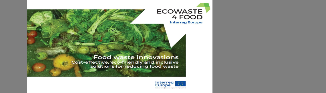 Some eco-innovative good practices to reduce food waste at various levels of the food system