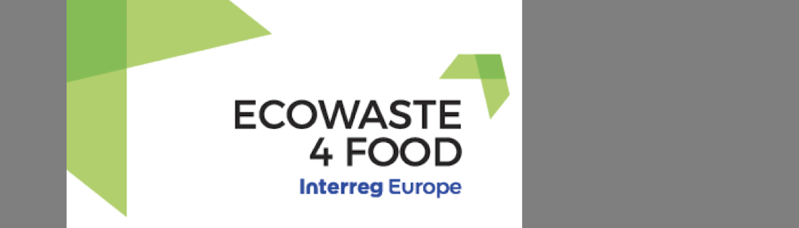 ECOWASTE 4 FOOD Final Conference : Watch the pesentations!